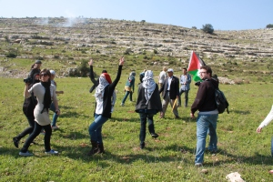 Palestinian and Israeli protestesters in Nabi Saleh, West Bank